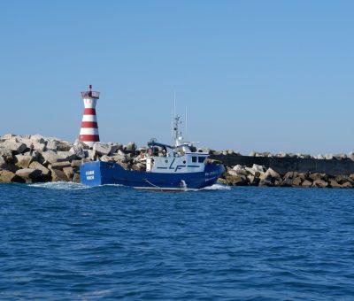 """Construção de barco para artes """"Vilamar"""""""